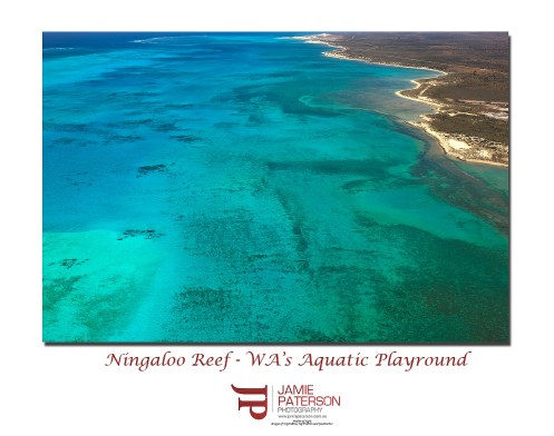 ningaloo reef exmouth australian landscapes seascapes jamie paterson aerial photography