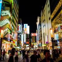 Japandaman's Otaku Guide to Japan