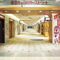 Tokyo - Japandaman's Otaku Guide to Japan