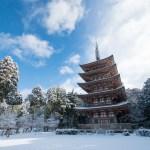 Heavy Snowfall made Kyoto more beautiful