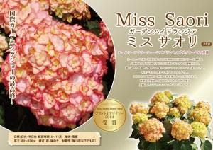 misu-saori6