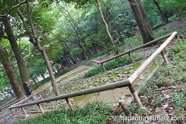 Ancient ritual site: tadasu-no-mori grove