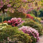 lea_gardens_187_jpg_600x