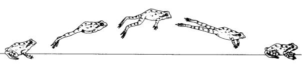 frog-jump