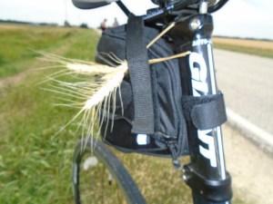 wheat bike