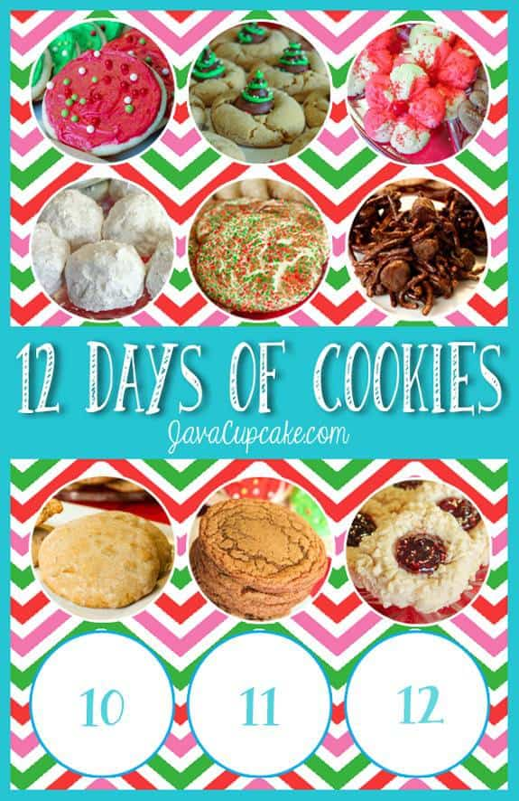 Day 9 of 12 Days of Cookies | JavaCupcake.com