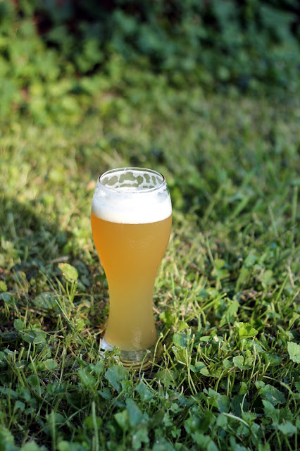 Banana Islands India Pale Hefeweizen, five minutes later.