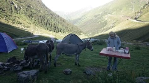 na rumuńskim biwaku