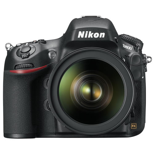 front Nikon D800 First Impressions With Test Shot / It Was Worth the Wait Calgary Photographer Jeff Cruz Pictures