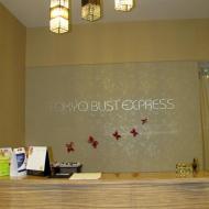 Singapore Tokyo Bust Express