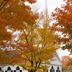 Fall foliage surrounding church