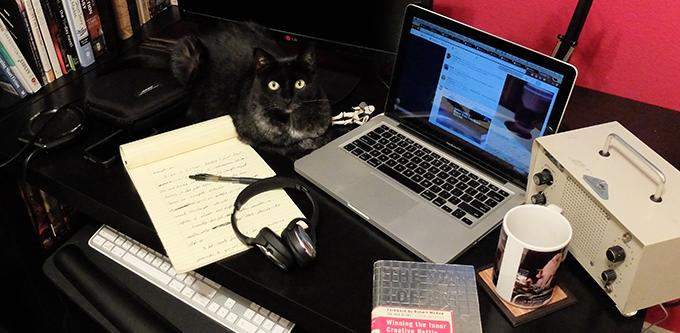 Feline Editor