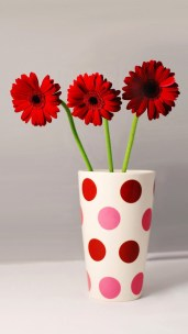 cup_Flowers