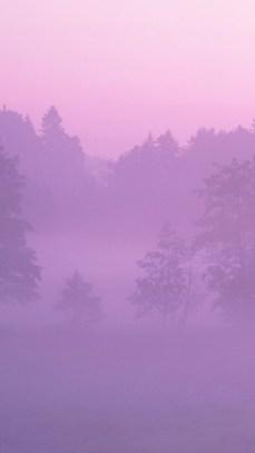 pink_fog
