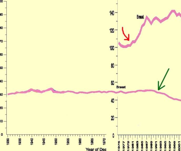 CAAC 2006 Breast Cancer Mortality Incidence