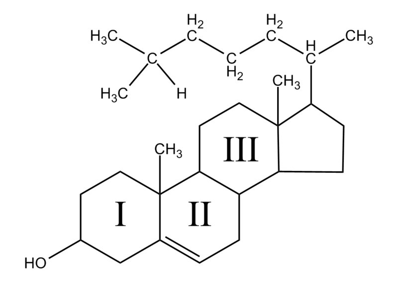 Chemical Structure of Cholesterol