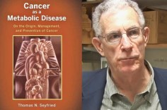 Cancer As Metabolic Disease Seyfried