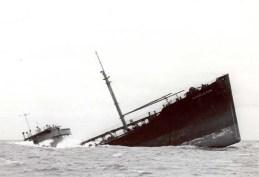 Abandon Ship Synthetic Hormones