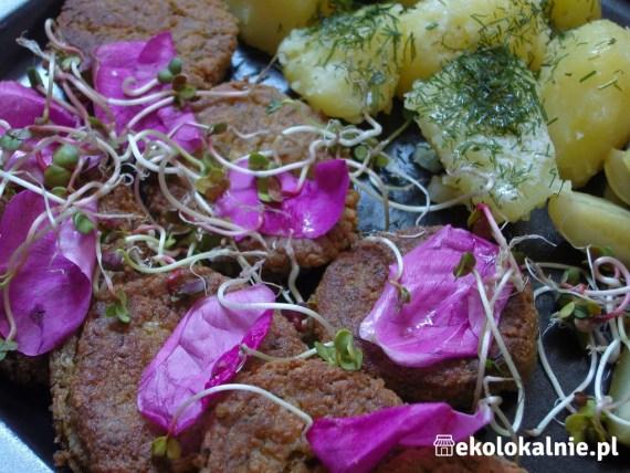 Kotleciki jaglane z pesto