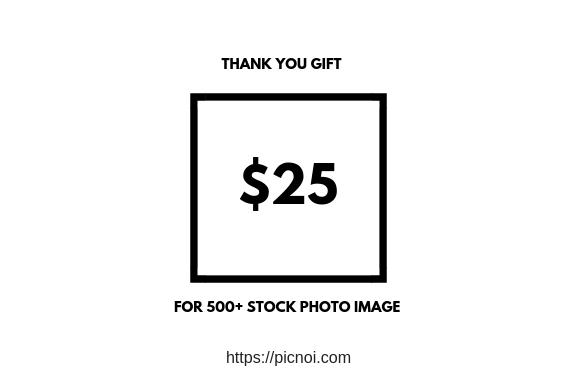 picnoi for $25