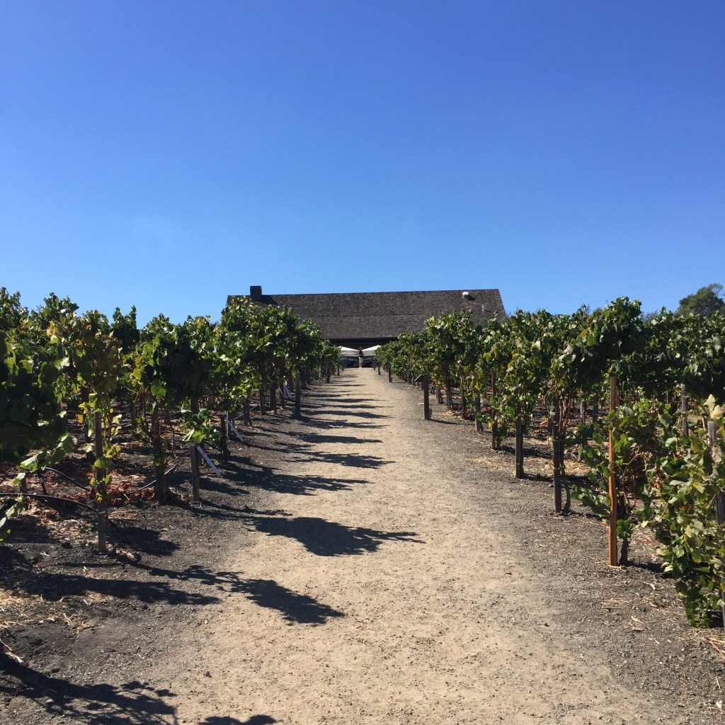 A Day in Wine Country