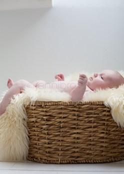 natural-newborn-photography-_-10