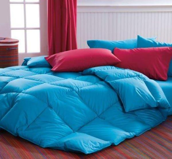 Blue Comforter Cuddledowns, Vibrant Bedspreads and Comforters - OH MY!