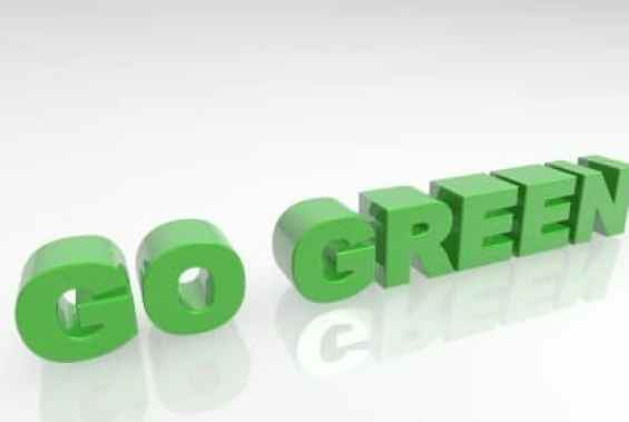 8 Easy Tips To Go Green and Become More Eco Friendly