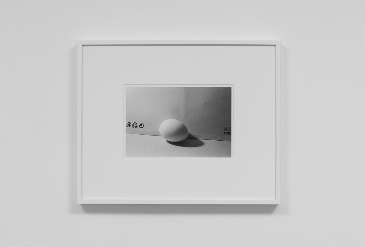 Carter Seddon - Egg, 2015, archival inkjet print, 11 ¾ x 14 ½ inches framed