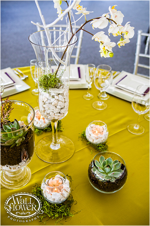 Centerpiece of Terrariums by Jen's Blossoms | Photo By: Wallflower Photography
