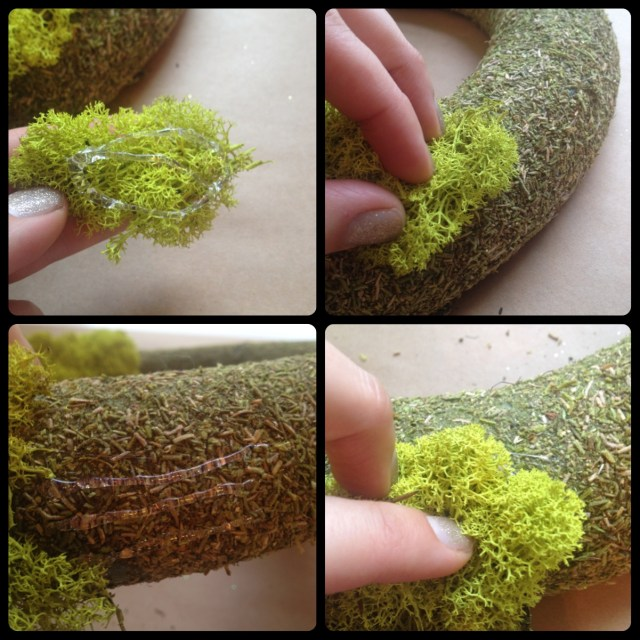 Reindeer Moss Wreath Steps 1