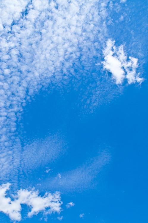 Blue Big Sky