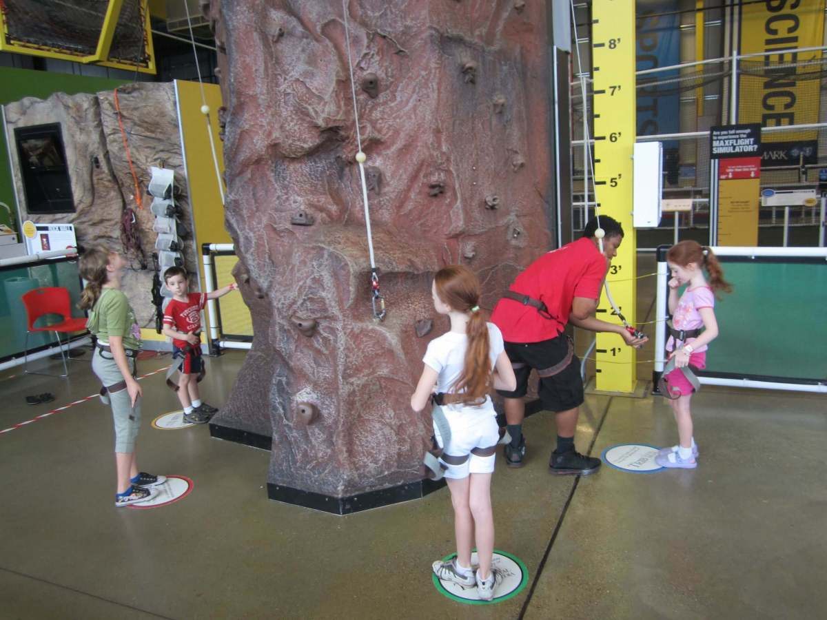 Taking their places on the rock wall.