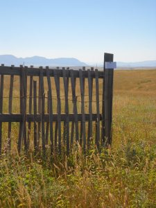 Words and fences