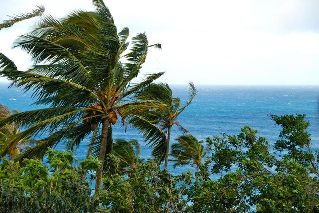 hawaii33