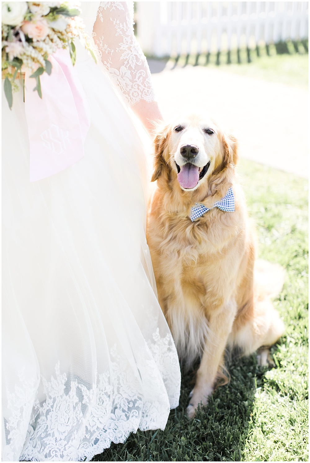 Wedding puppy with bow tie, navy and pink southern wedding | Ivan & Louise Images and Jessica Dum Wedding Coordination