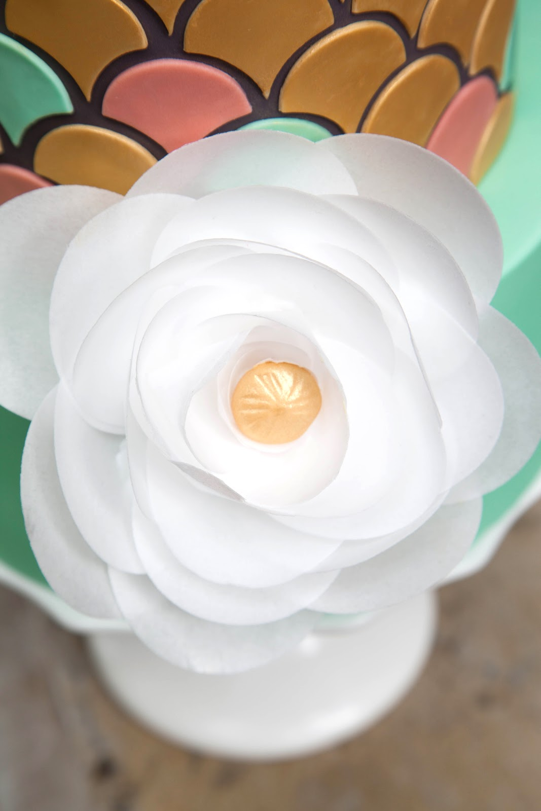 Cake Designs On Paper : Wafer Paper Flowers - Tutorial Video - Jessica Harris Cake ...