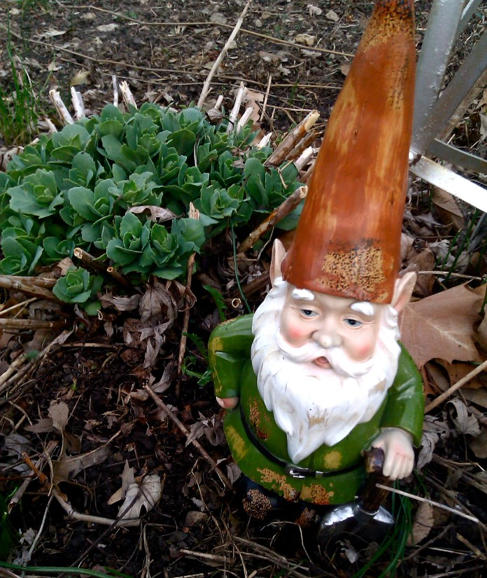Lawn Gnome Mr. Frecklbottom