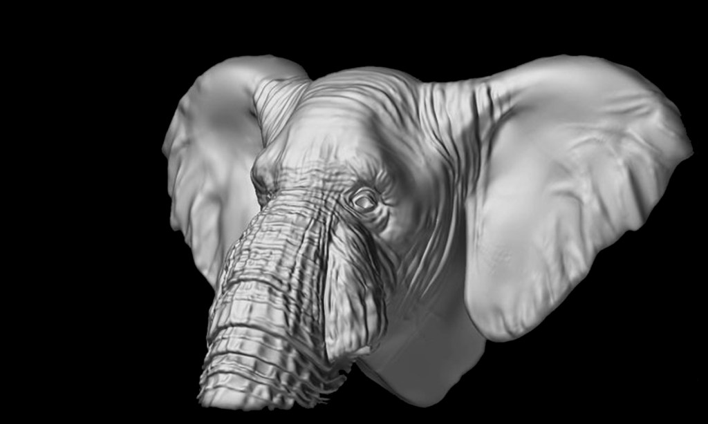 Elephant_Main