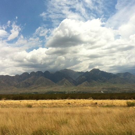 Andean plains