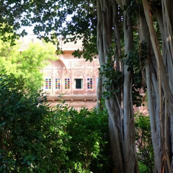 Bal-Samand-Palace-Hotel-gardens