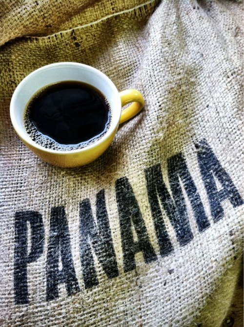 Panama coffee bocas del toro shop