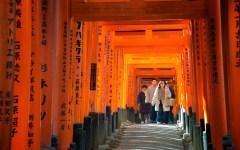 Gennaro Serra Torii Gates, Kyoto