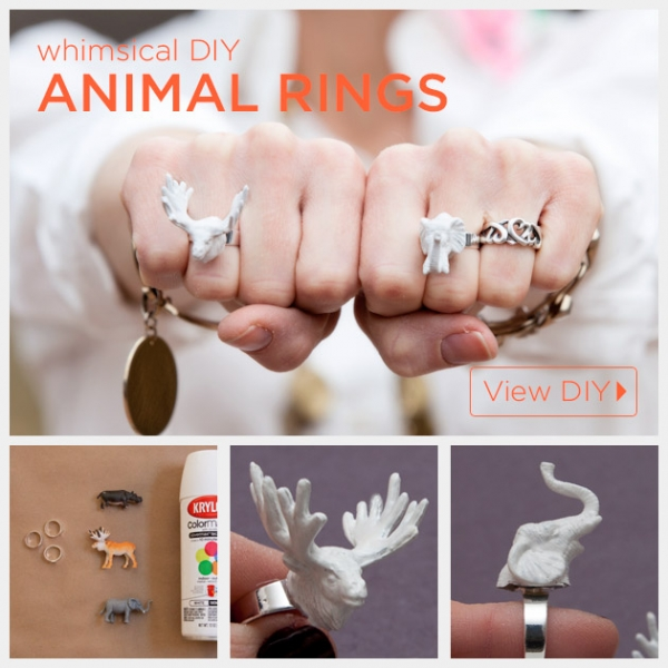 animal-ring-diy-feature-040714