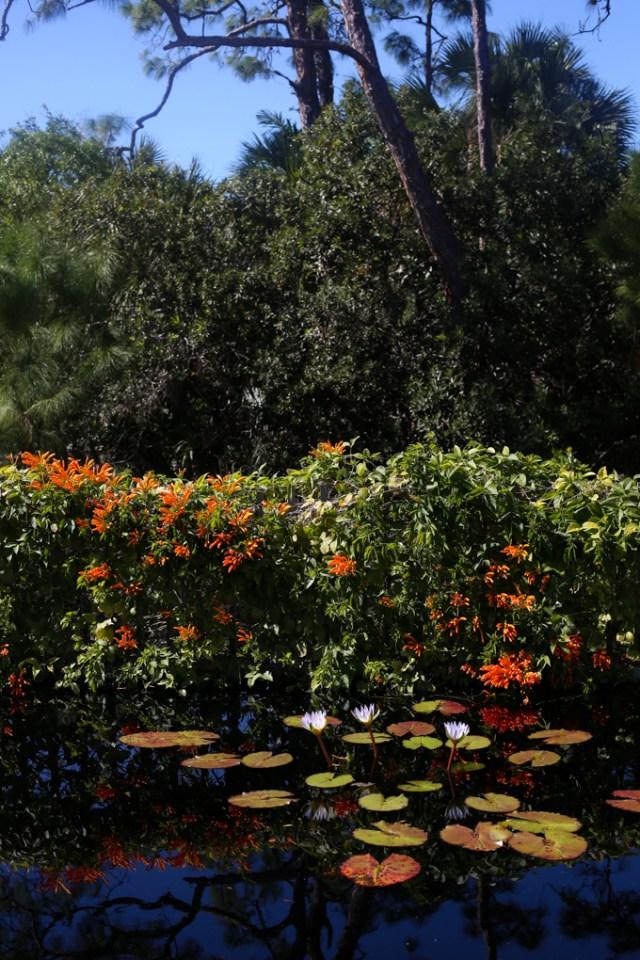 naples-botanical-garden-blog-3