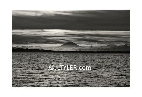 JL Tyler Photography