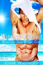 WitnessPursuit