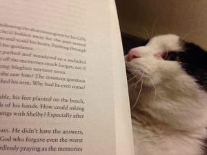 Love this photo of Wilson reading Where She Belongs. Thank you, Tammie Fickas!