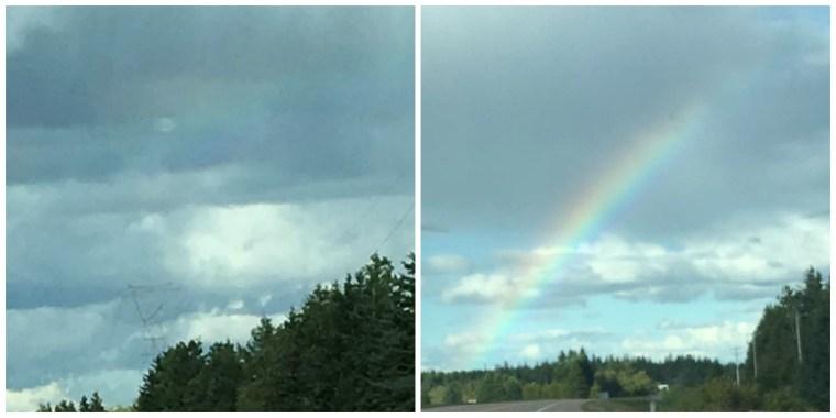 09-29-rainbow-collage