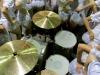 Hollerado drumset